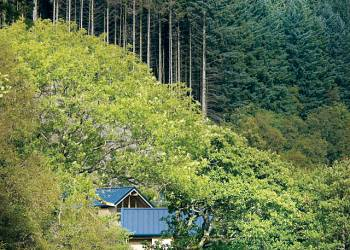 Strathyre Forest Holiday Lodges in Perth and Kinross