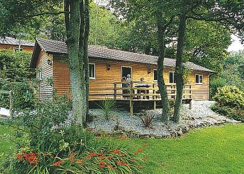 Photo 11 of Ivyleaf Combe Lodges