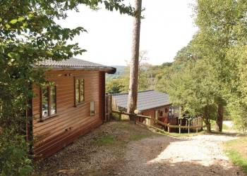 Sandy Balls Lodges Holiday Lodges in Hampshire