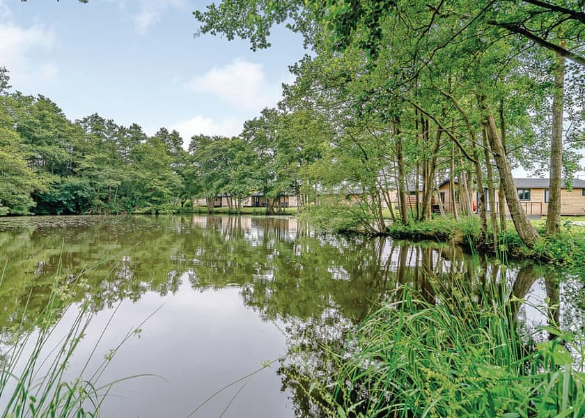 Warren Wood Country Park Holiday Lodges in East Sussex