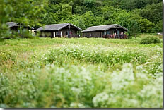Carry Farm, Tighnabruaich,Argyll and Bute,Scotland