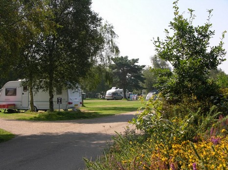 Kelling Heath Holiday Lodges in Norfolk