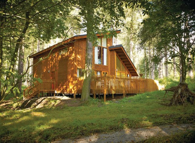 Blackwood Forest Lodges Holiday Lodges in Hampshire