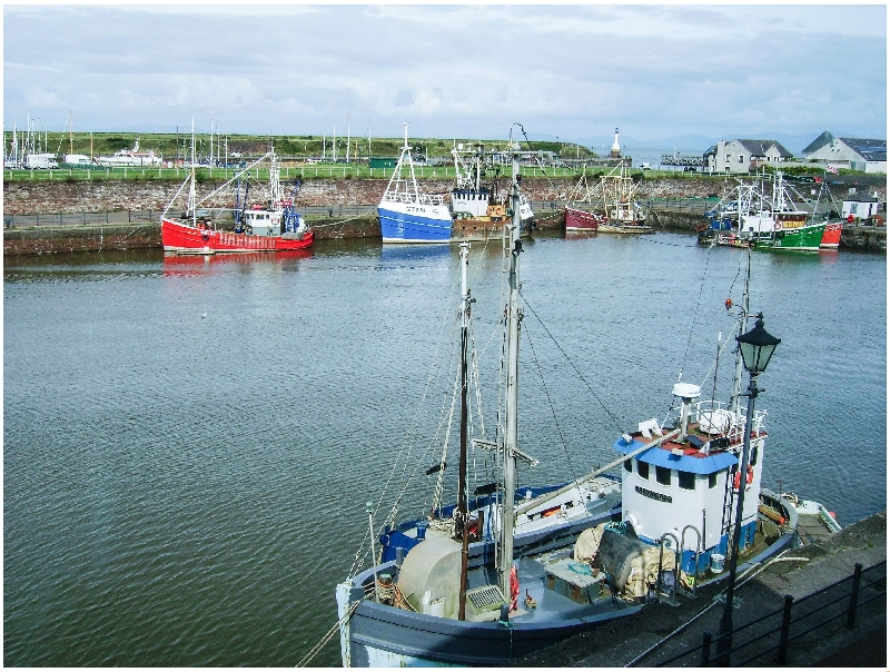 Click here for more about Harbour Side
