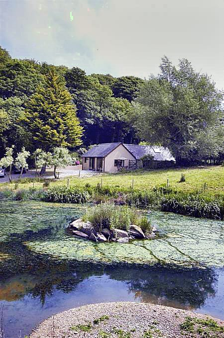 Woodpecker Cottage a british holiday cottage for 4 in ,